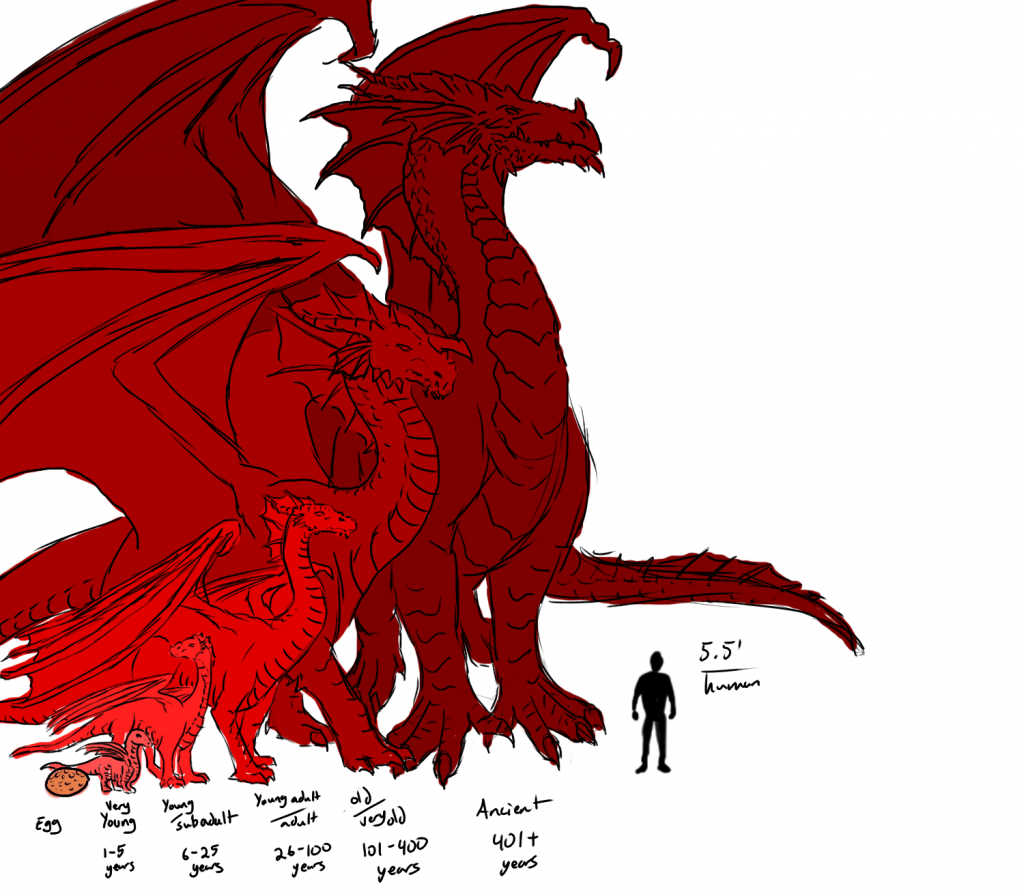 dragon size chart by age by ladyadriela
