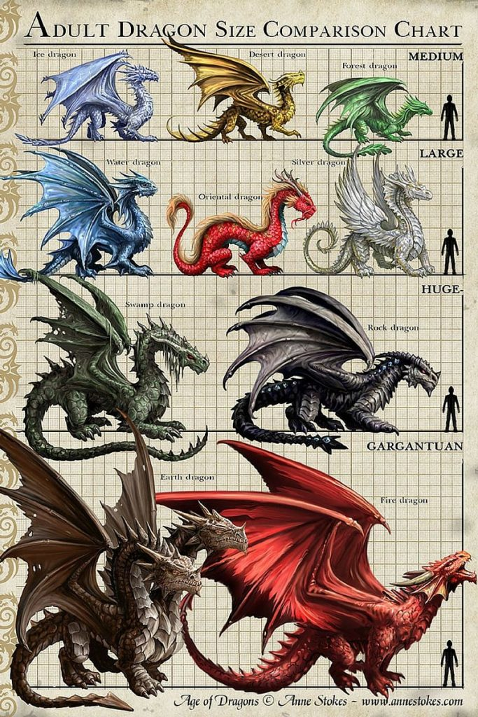 Dragon Size Comparison Chart to Human Age of Dragons Anne Stokes Fire Red Earth Gargantuan Rock Swamp Huge Silver Oriental Water Large Forest Desert Gold Ice White Meduim