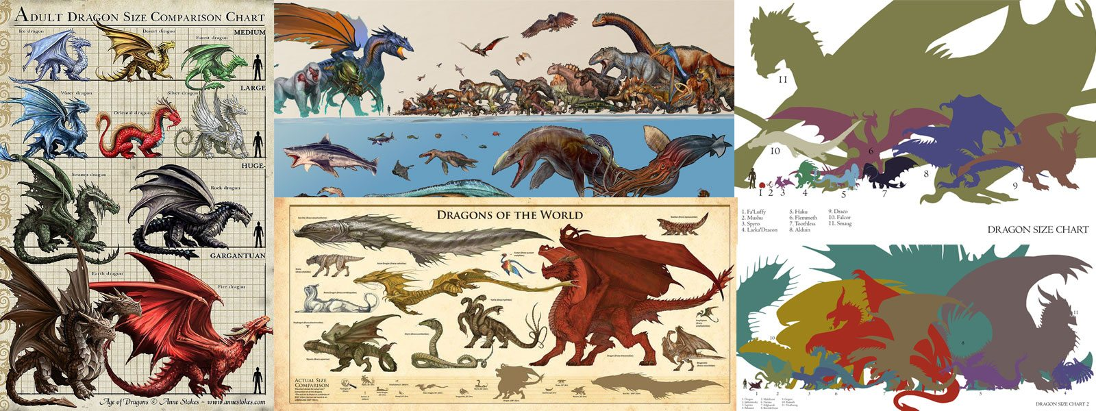 Dragon and Monster Size Comparison Charts D20 D&D DND Dungeons and Dragons Pathfinder Dragons Monsters Compared Human Elf Dinosaurs ARC Sea Creatures