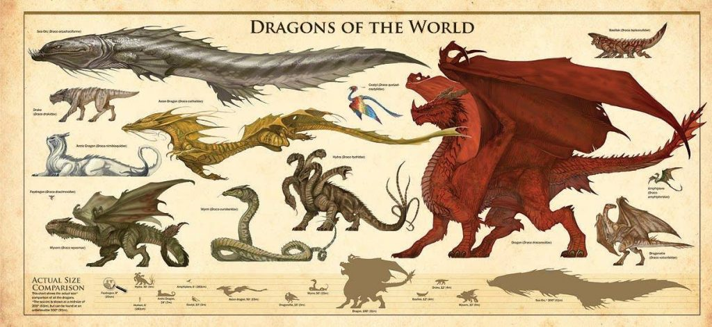 Dragons of the World with Size Comparison Chart